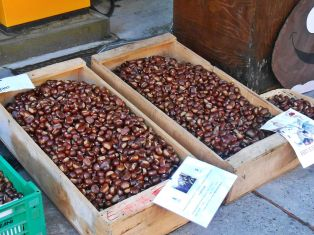 Chestnuts in Boxes